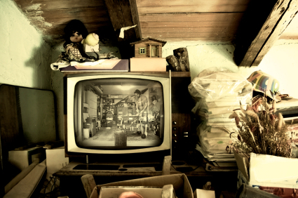 Whats-in-your-attic